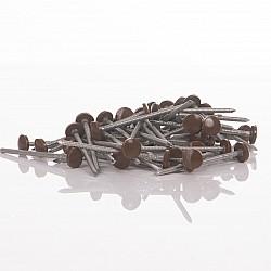 Oak Fascia Nails 65mm Plastic Head Top Pins - 100 Pieces